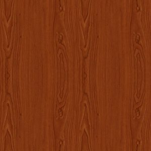 Brown Wood Door SKT-D-17