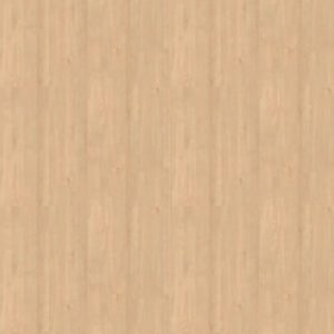 Egg White Wood Veneer SKT-VNR-22_1
