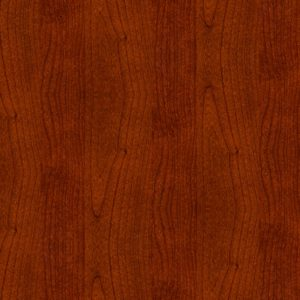 Mahogany Wood Door SKT-D-5