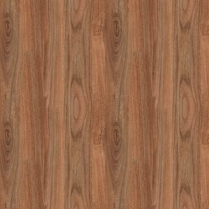 Dark Walnut Wood Door SKT-D-6
